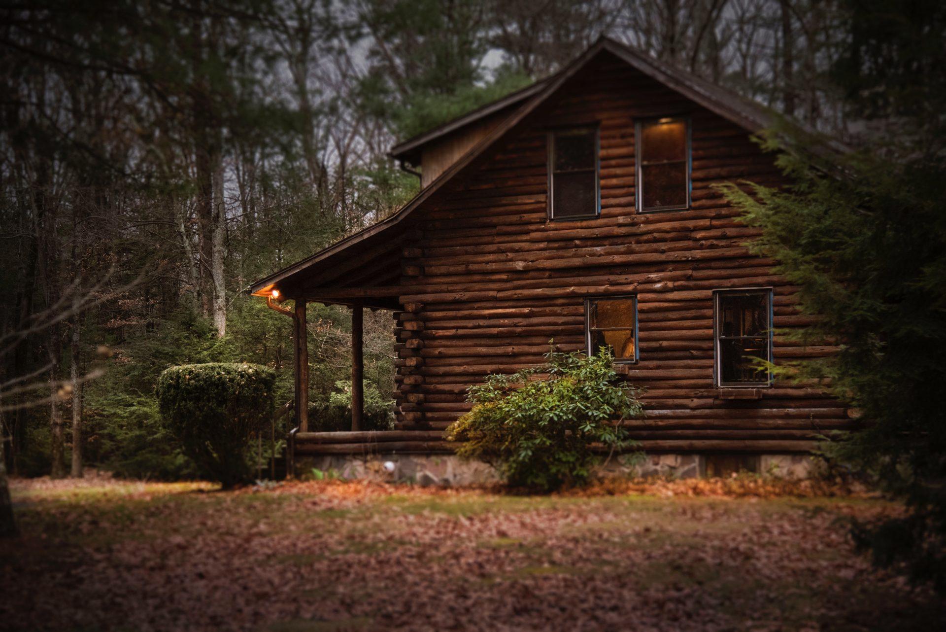 drevodom-dreveny-dom-les-stromy-listy-kriky-priroda